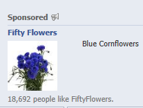 facebook-ad-cornflowers